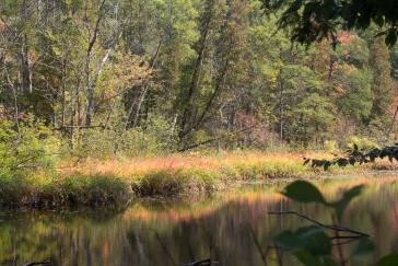 """September 22nd - """"Autumn"""""""